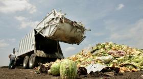 Сельхозотходы пустят на наноцеллюлозу