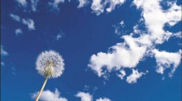 Расширение и сжатие воздуха