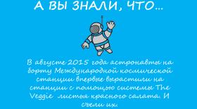 Космонавты-огородники